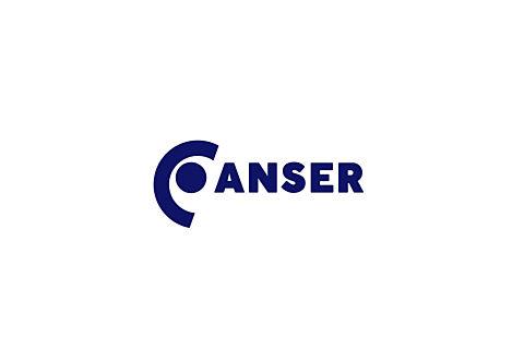 Anser logo